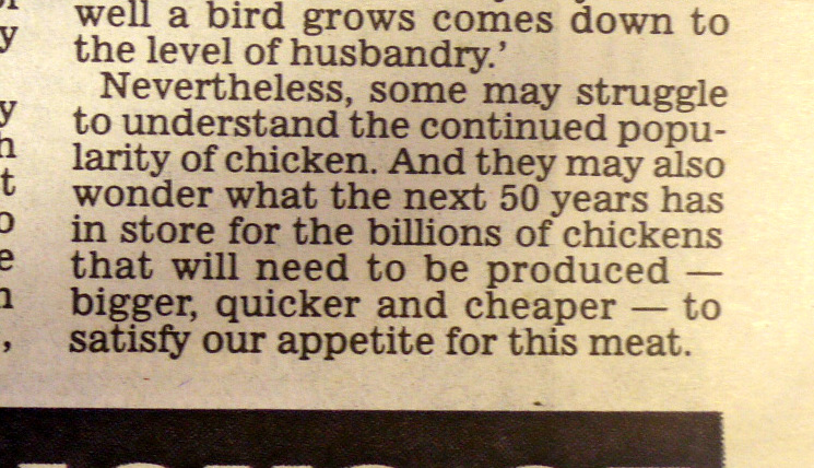 Daily Mail - is cheap chicken worth it?